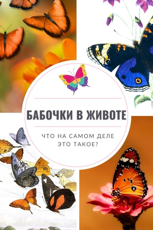 что такое бабочки в животе научное обьяснение