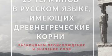 Анатомия терминов из древнегреческого и латинского языков