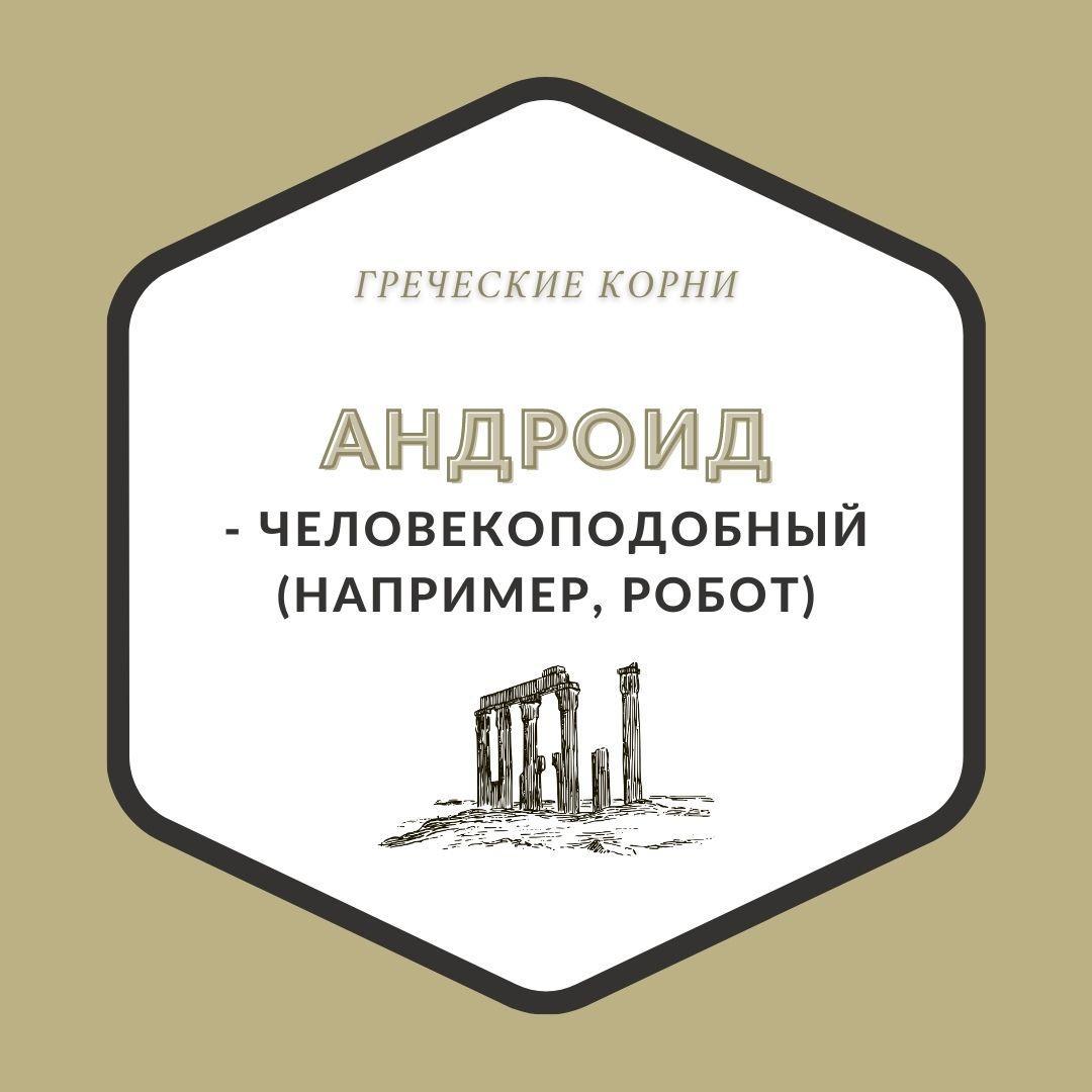 Термины с древнегреческим корнем андр - Андроид