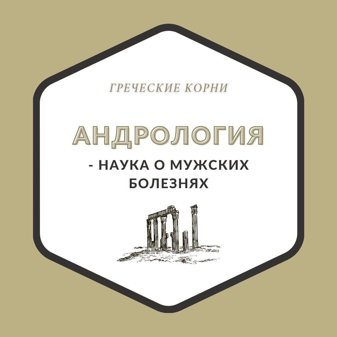 Термины с древнегреческим корнем андр - Андрология