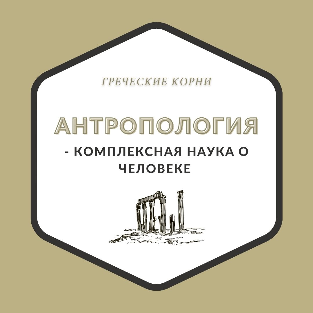 Термины с древнегреческим корнем антроп - Антропология