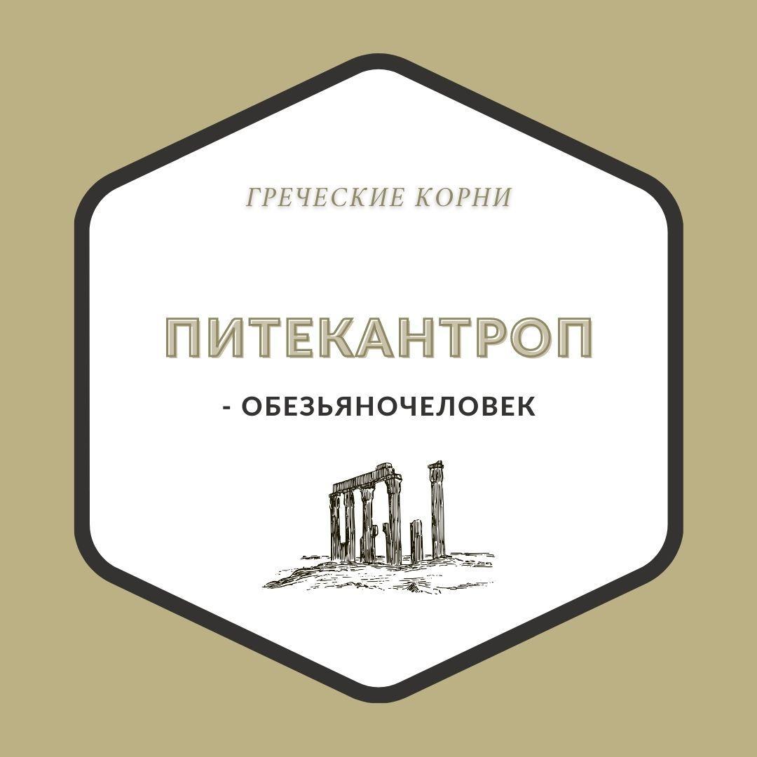 Термины с древнегреческим корнем антроп - Питекантроп
