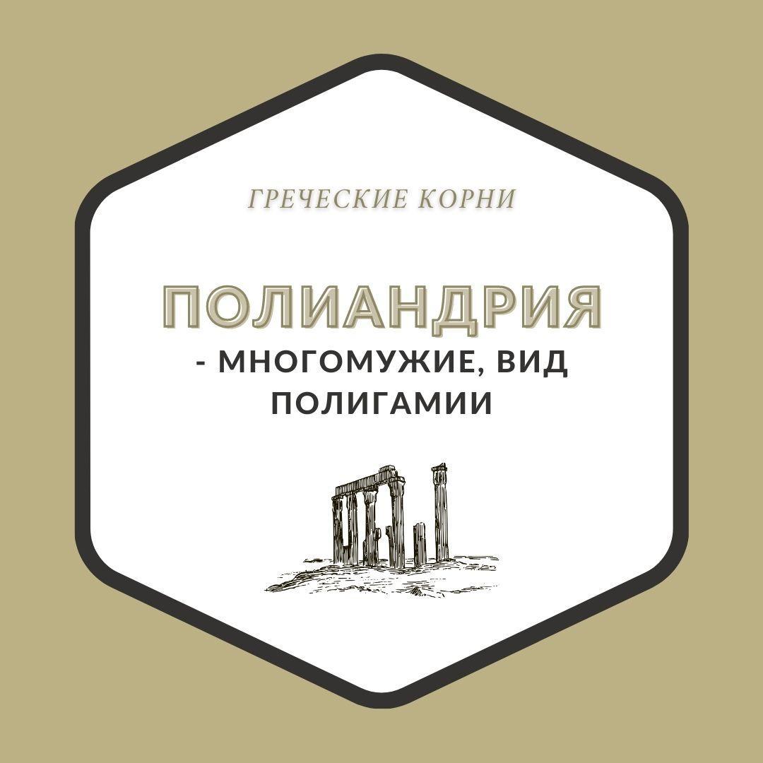 Термины с древнегреческим корнем андр - Полиандрия
