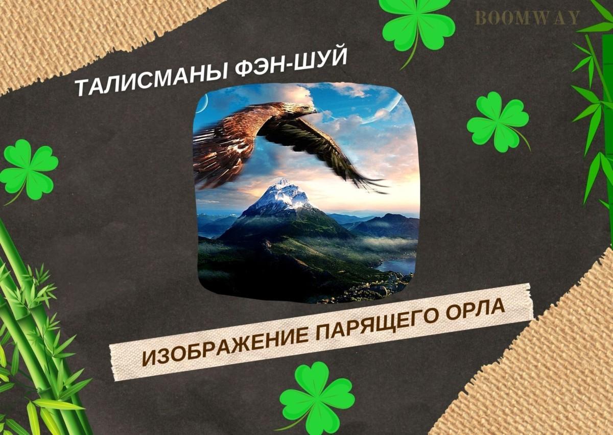 Орел, гордо парящий в небесах — один из самых великолепных изображений для сектора славы